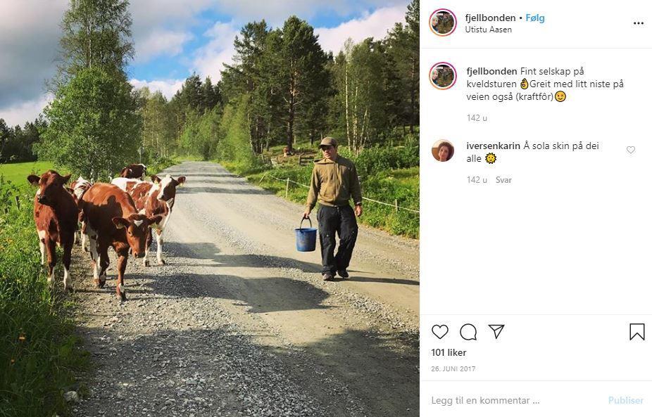 """Øistein Aasen ble kåret til Årets Unge Bonde 2019. Du kan følge familien på """"fjellbonde"""" på Instagram"""