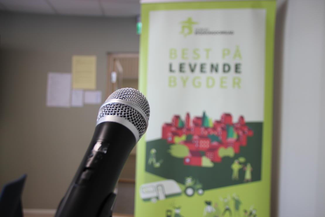 Den virtuelle talerstolen inntas flittig under årsmøte i Norges Bygdeungdomslag, som i år avholdes digitalt. Foto: Emma Gerritsen