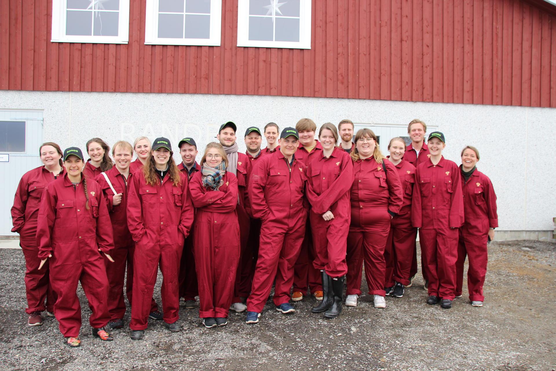 Illustrasjonsfoto: Norges Bygdeungdomslag