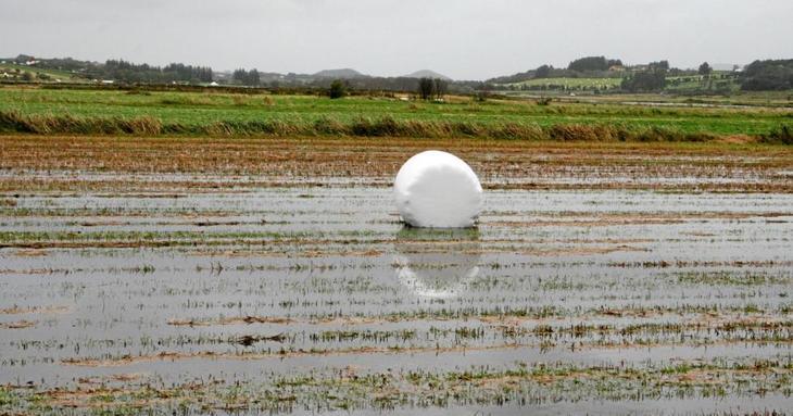 Landbruket er sårbar for klimaforandringer