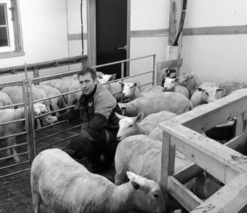 Årets Unge bonde 2018 Olav Høyheim Einan. Foto: Privat