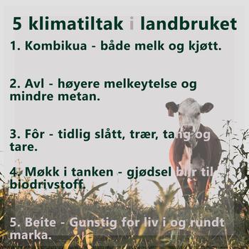5 klimatiltak i et landbruk med dyrehold