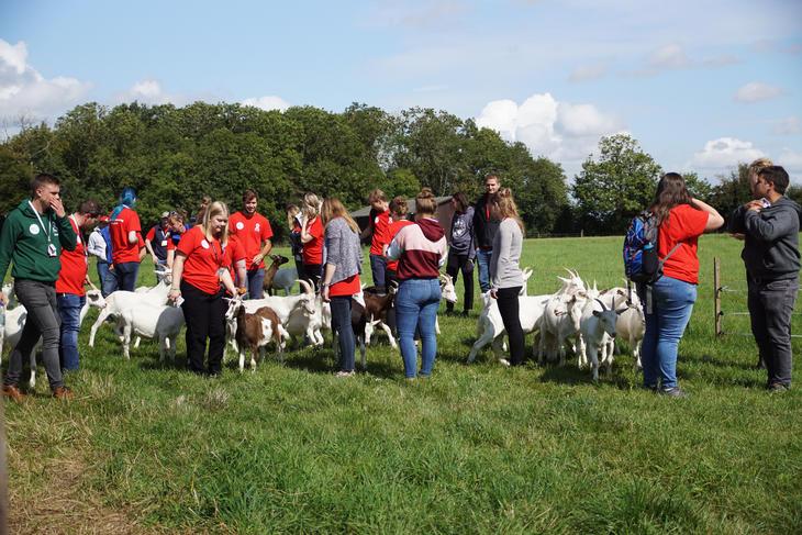 Rally-deltakerne får mulighet til å være med på mange gårdsbesøk i England. Foto: Kathrine Skaug